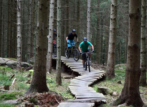 Join the MTB tracks - The track with a view